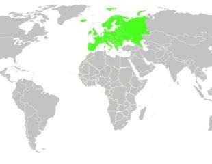 где находится европа на карте мира